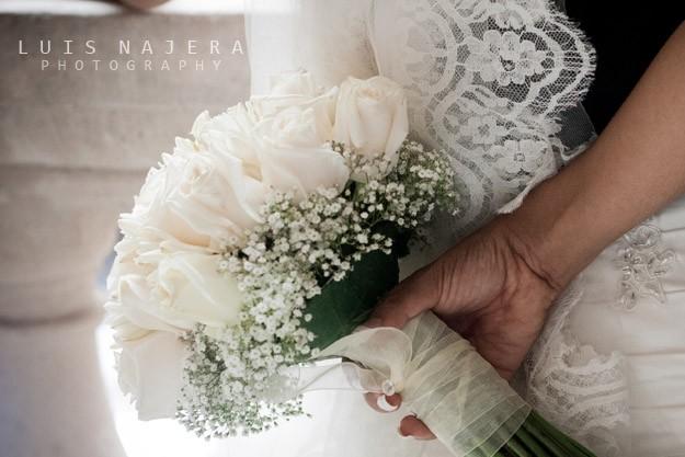 boda, chihuahua, fotógrafo, profesional, vestido, palacio de gobierno, ariana, ramo de novia