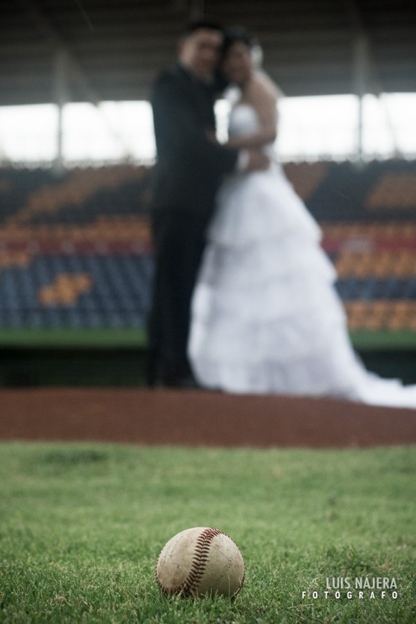 chihuahua, estadio monumental, béisbol, boda, Gris y David, pitcher, pelota