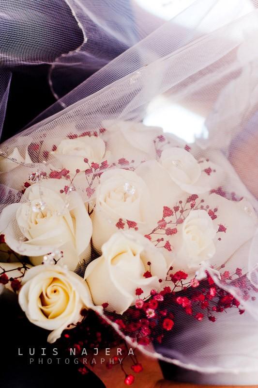 boda, fotógrafo, chihuahua, iglesia, profesional, bougambilias, ramo de rosas